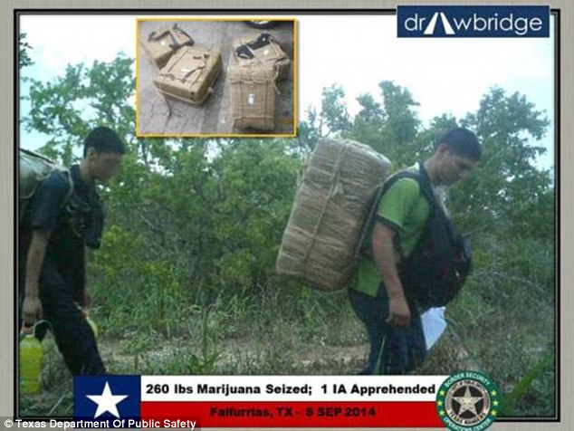 They helped border guards apprehend nearly 30,000 suspects and have led to 88,400 pounds of drugs being seized in 2014 as part of Operation Drawbridge. These two suspects were detained after they were found carrying 260lbs of marijuana across the border
