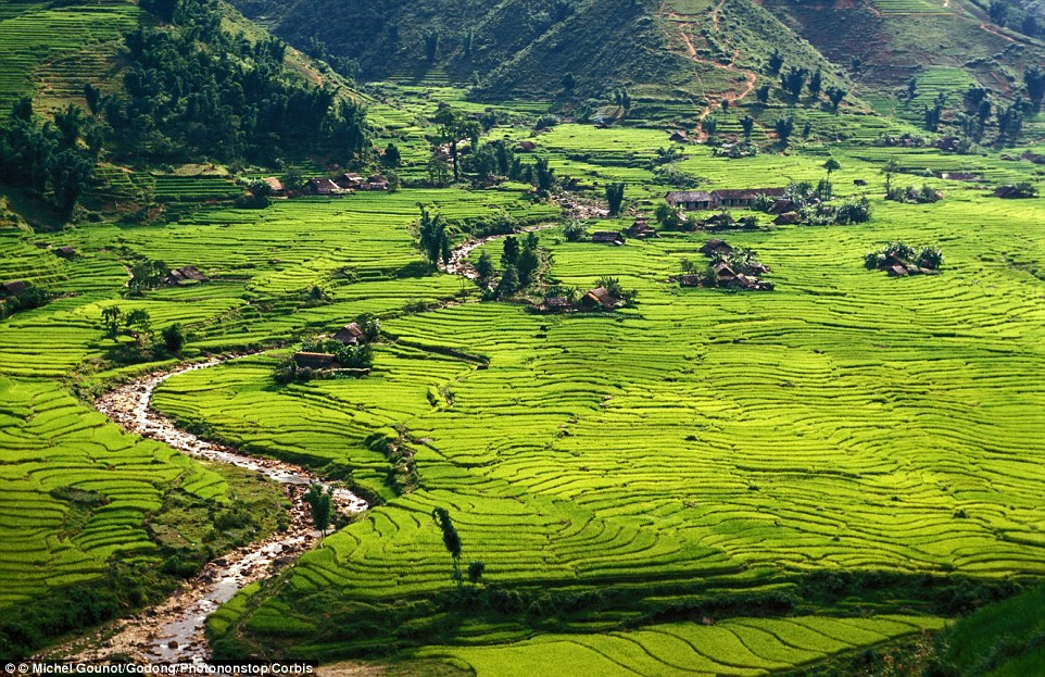 Green haven! Sapa is one of the most beautiful places in earth, and is home to villagers who farm the rice fields and sell trinkets to visitors