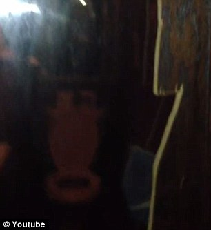 The dark video shows how the door is cut away to reveal the see-through side of the mirror, pictured