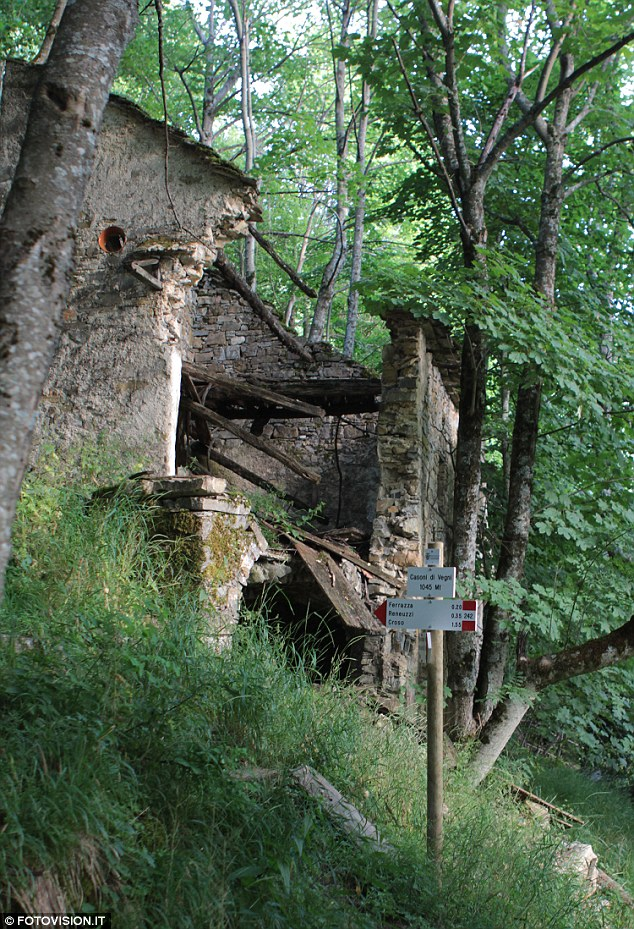 Recent listings in washington of natural forestland for sale totaled around 100,000 acres acres of natural forestland and a combined market value of $48 million. Buy A House In The Gorgeous Italian Countryside For Just 1 Village Homes Being Given Away To Stop Blight Of Ghost Towns But You Ll Need To Promise 18 000 To Do Them Up