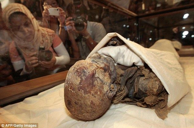 The average height of kings was 5.44ft and queens and princesses averaged at 5.14ft (156.7 cm). Pictured are the mummified remains of Queen Hatshepsut, ancient Egypt's most famous female Pharaoh