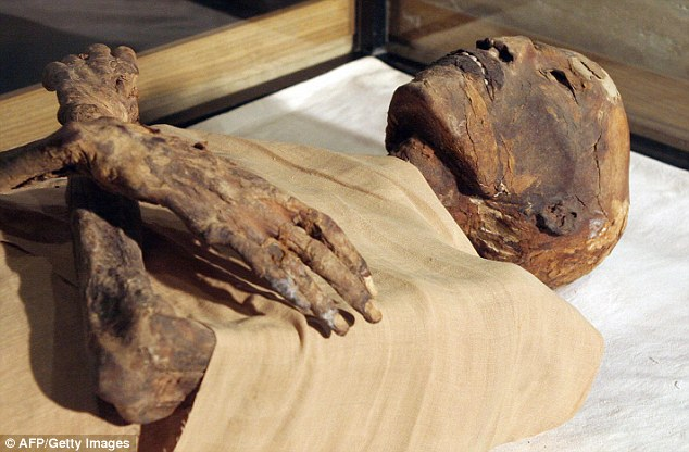 A new study of 259 mummies has provided direct evidence of incest by measuring Pharaohs' height variations and comparing it to the variation of the general Egyptian population at the time. Pictured is the mummy of Pharaoh Ramses IV, who was a 21st dynasty king who ruled for only six years (1152-1145 BC)