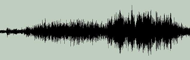 Esta es la onda de sonido capturado del ruido en Alemania, que parecía dejar a un niño congelado en estado de shock