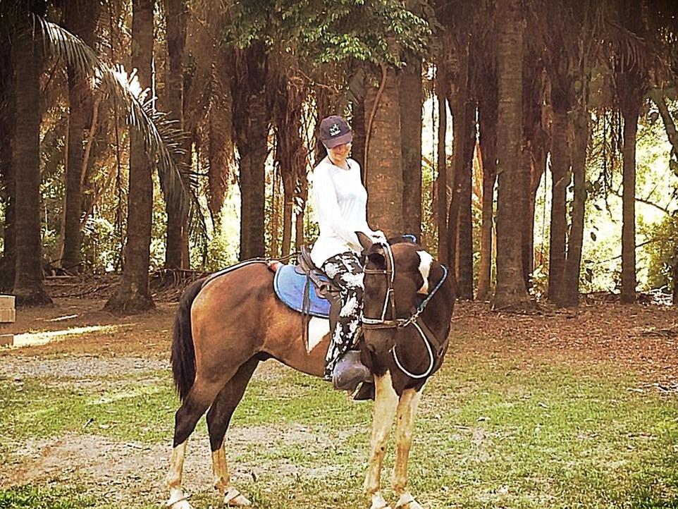 For touring the beach and forest, I had Bella the dappled horse (pictured), who I cantered up and down the pristine shores as the sun gave way for the moon each night