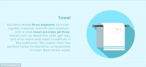 Towels pick up dead skin cells, get wet, and sit in warm and moist conditions in the bathroom, making them a haven for bacteria