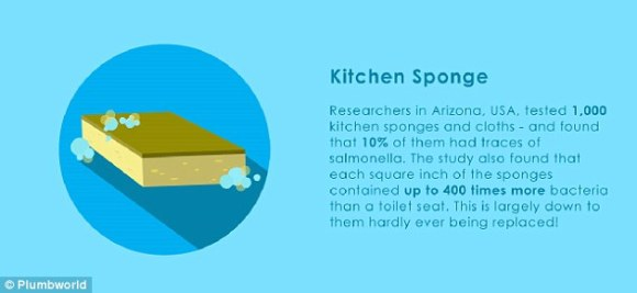 A study found 10 per cent of kitchen sponges had traces of salmonella, and they contained up to 400 times more bacteria than a toilet seat