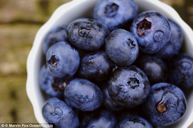 Resveratrol, an antioxidant found in blueberries, has been found to improve sperm count and motility