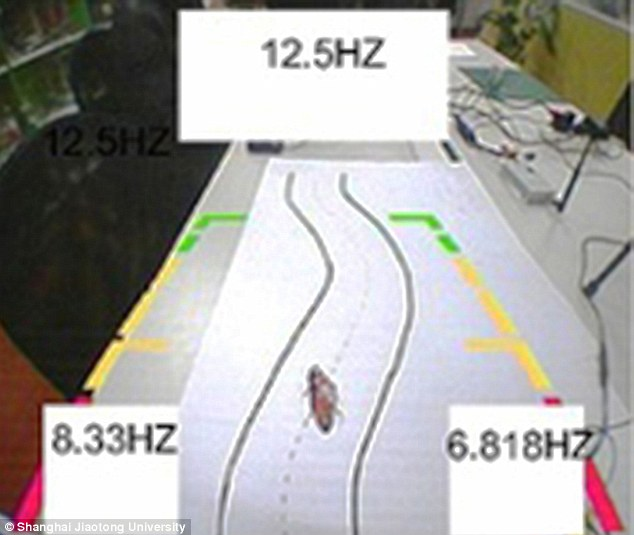 It is not the first time cockroaches wearing electronic 'backpacks' have been controlled by humans, but it is the first time they've been controlled directly by a human mind. Here, the insect is guided on an S-shaped path
