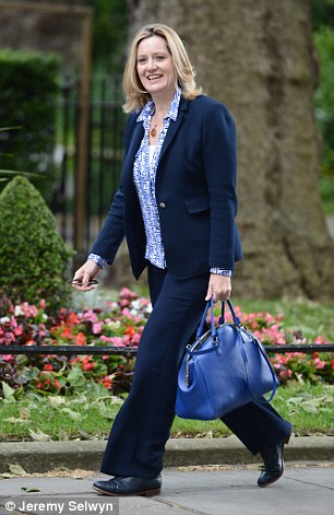 'Long-term plan': Energy secretary Amber Rudd (pictured) said the Government wants to 'keep bills as low as possible for hard-working families'