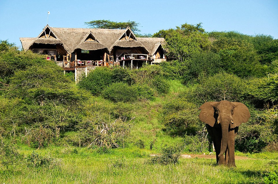 At the stunning  ol Donyo Lodge, on the slopes of the Chyulu Hills, wildlife teems on the slopes below and Mount Kilimanjaro towers on the horizon