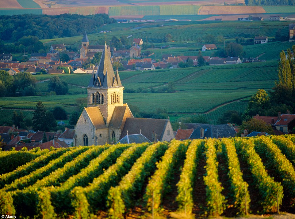 Already a popular attraction, the vineyards, cellars and sales house in Champagne, France are now a world heritage site