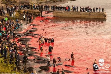 Świadkowie: Zabitych na plażach, setki mieszkańców przyjść oglądać brutalną rzeź