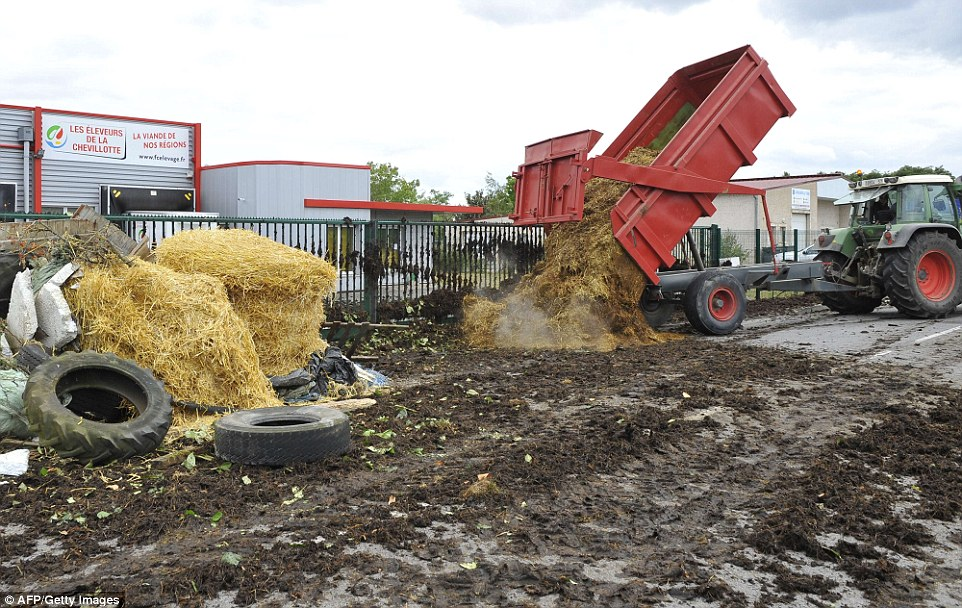 Down in the dumps: Protesting farmers left trailer loads of steaming manure outside supermarkets, which it blames for food-price trouble