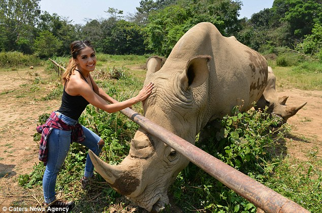 Miss Moreno, pictured with a rhino, grew up on a farm in the countryside, which inspired her love of animals