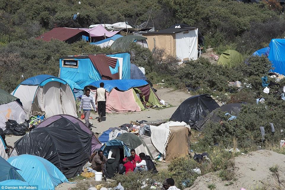 Caos: Mientras que alrededor de 3.000 migrantes han sido confirmados como vivir en la 'jungla', organizaciones benéficas creen muchos más están durmiendo a la intemperie en el sitio