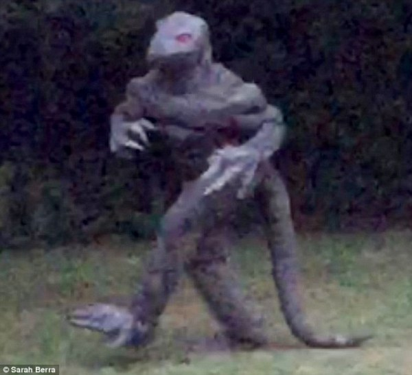 South Carolina's Lizard Man may have been captured in new ...