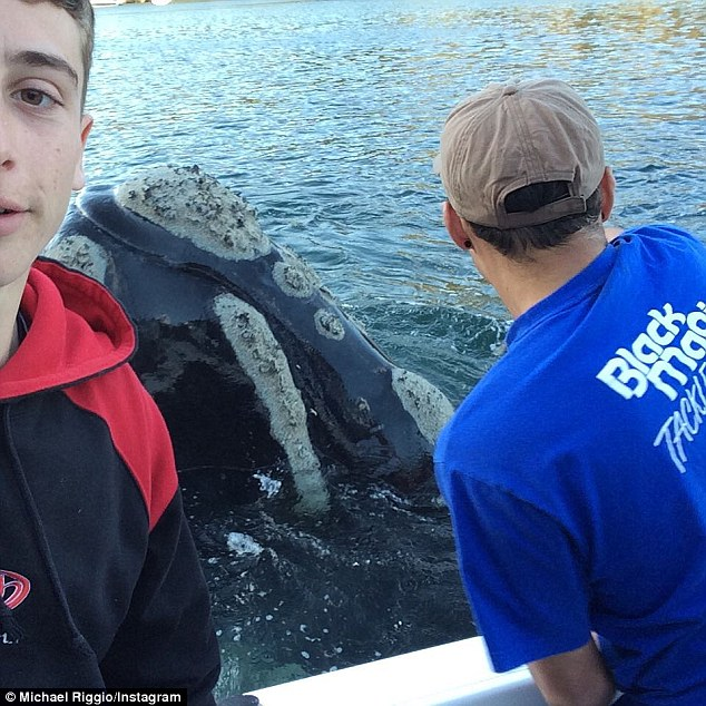 Michael Riggio, 17, (left) took selfies with the whale while his friend IvanIskenderian helped the creature