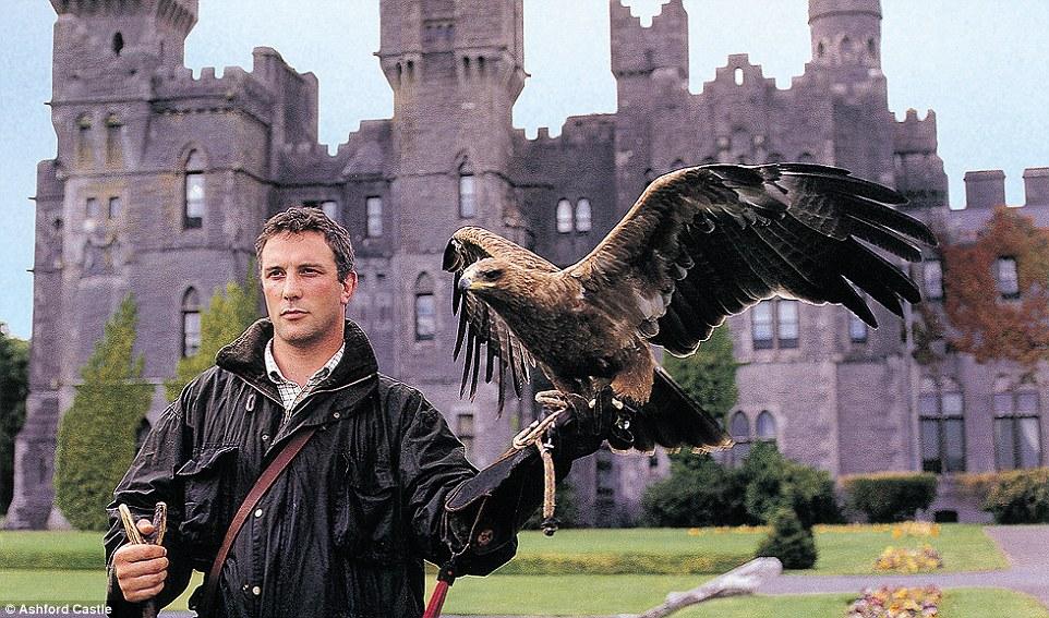 Ashford Castle é a casa da mais antiga escola de falcoaria com sede na Irlanda, com convidados que estão sendo oferecidos a oportunidade de voar um falcão Harris