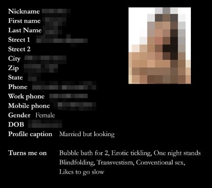 Profile: This is a genuine profile of an American user of Ashley Madison, including her sexual  preferences, although it has been put in this form by MailOnline for clarity