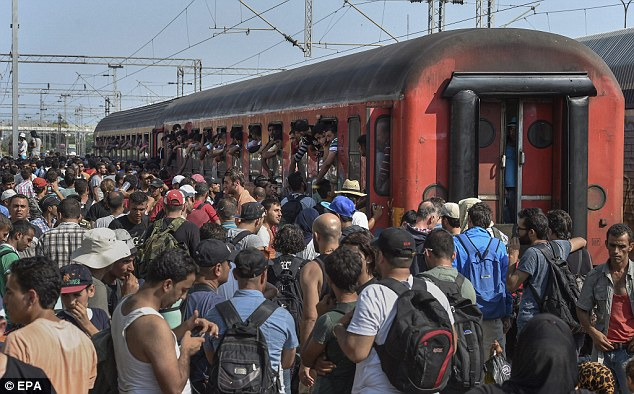 Hundreds of migrants pile on to a train in southern Macedonia have been desperately trying to get aboard trains travelling to Serbia