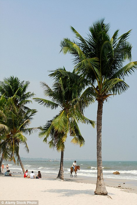 Palm trees line a relaxing beach at Hua Hin