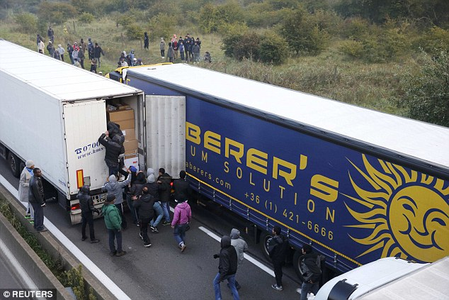 Another try: A dozen migrants try to pile in the back of a lorry they have identified at the Calais ferry terminal