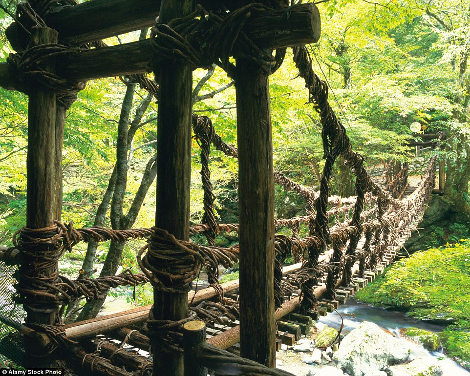There are three vine bridges in                              Shikoku, the smallest of Japan s four main                              islands, which are constructed using slats                              of wood placed between 7 and 12 inches                              apart, secured in place with two single                              vines - not