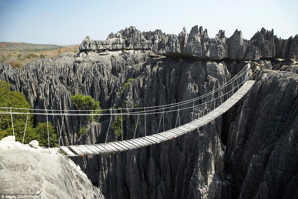 Hold on tight: Visitors can journey through the jagged needle-like pinnacles of Tsingy de Bemaraha National Park via wooden bridges with little support each side
