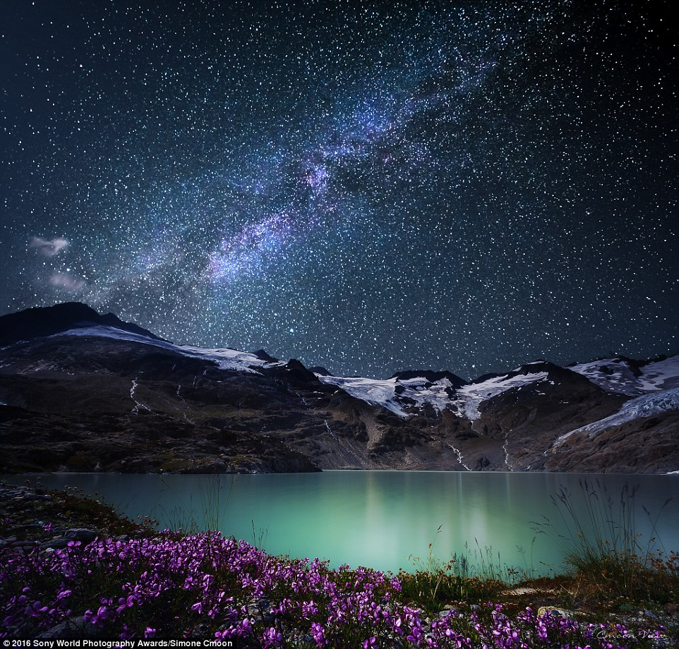 Simone Cmoon from Switzerland sent in this incredible image of the stars, flowers and settled snow above The Bernese Alps