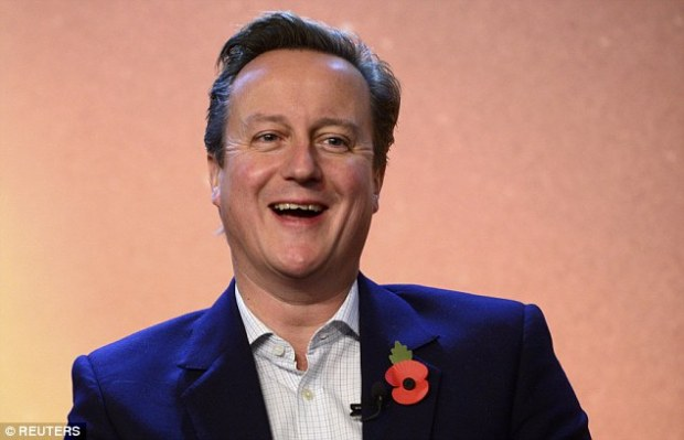 Mr Cameron's spokesman said: 'We are not giving a running commentary on the negotiations with other member states'