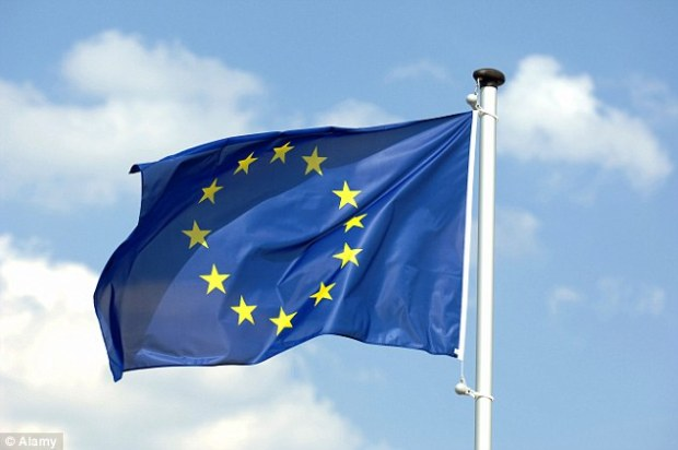 The business lobby group CBI is facing an investigation by the British Polling Council (BPC) over claims that its survey showing eight out of ten firms supported staying in the European Union was rigged (file picture)