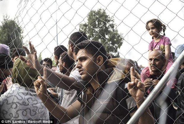 The 26-member Schengen zone has come under immense pressure as hundreds of thousands of refugees fleeing war and poverty in the Middle East and Africa stream across the continent. Migrants are pictured at a fence erected along the border between Serbia and Hungary
