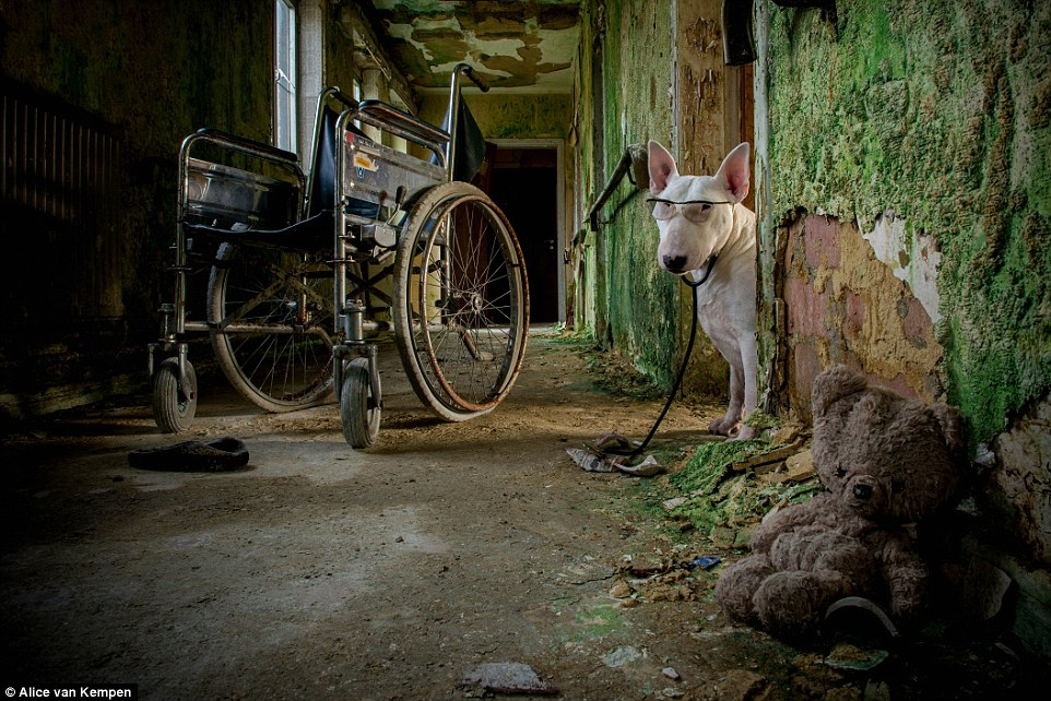 Beside a rusty wheelchair and discarded teddy bear, Claire poses wearing a stethoscope and glasses in this old nursing home in Belgium