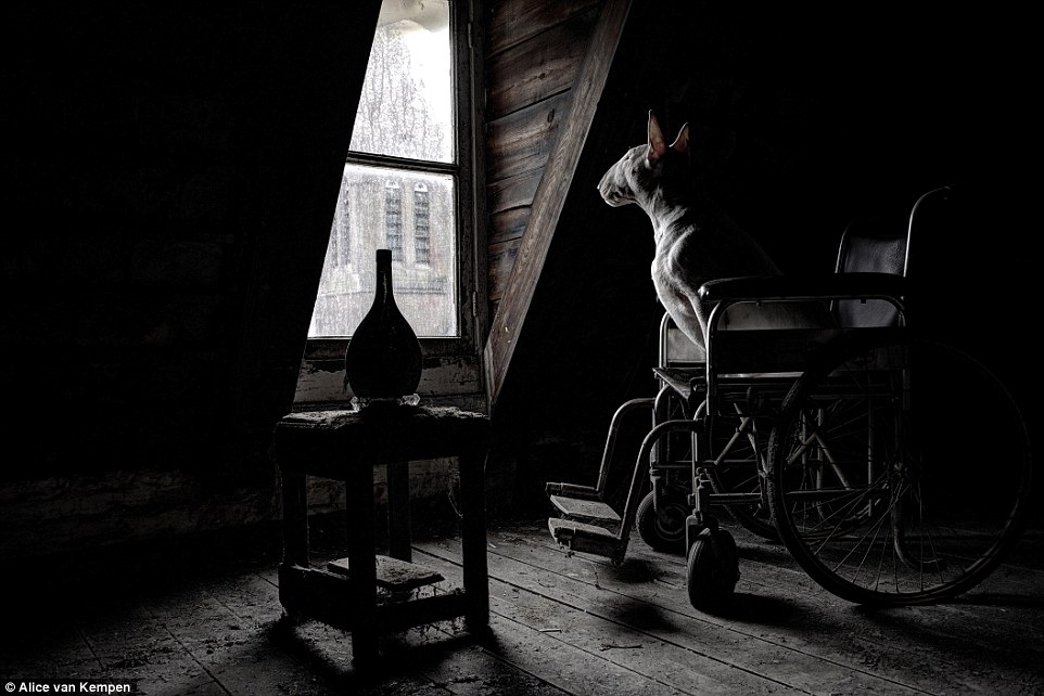 In a derelict monastery in Belgium, Clare stares out of the window as she sits in a left behind wheelchair in a dusty second floor room