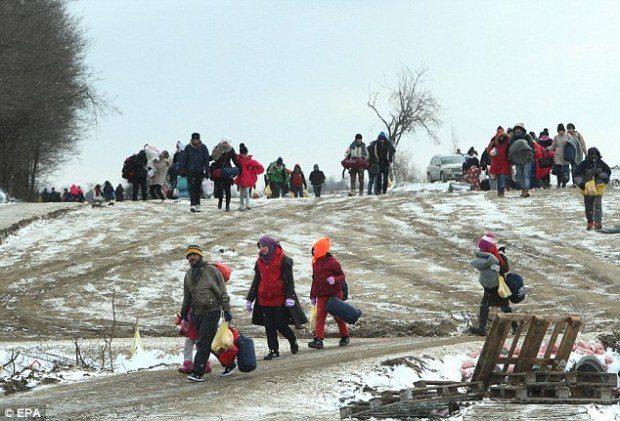 More than 12,000 people have been sent to other EU countries from Britain since 2003. Pictured: Migrants fromSyria, Iraq and Afghanistan walk in very cold weather, through snow in Macedonia to a camp