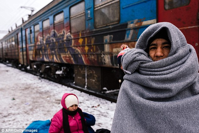The IMF has predicted four million refugees will reach Europe by the end of 2017. Pictured is a migrant waiting to catch a train while wrapped in a blanket while trying to keep warm in Serbia