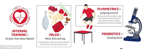 According to the chart, plyometrics involve rapid and repeated stretching and contracting of the muscles