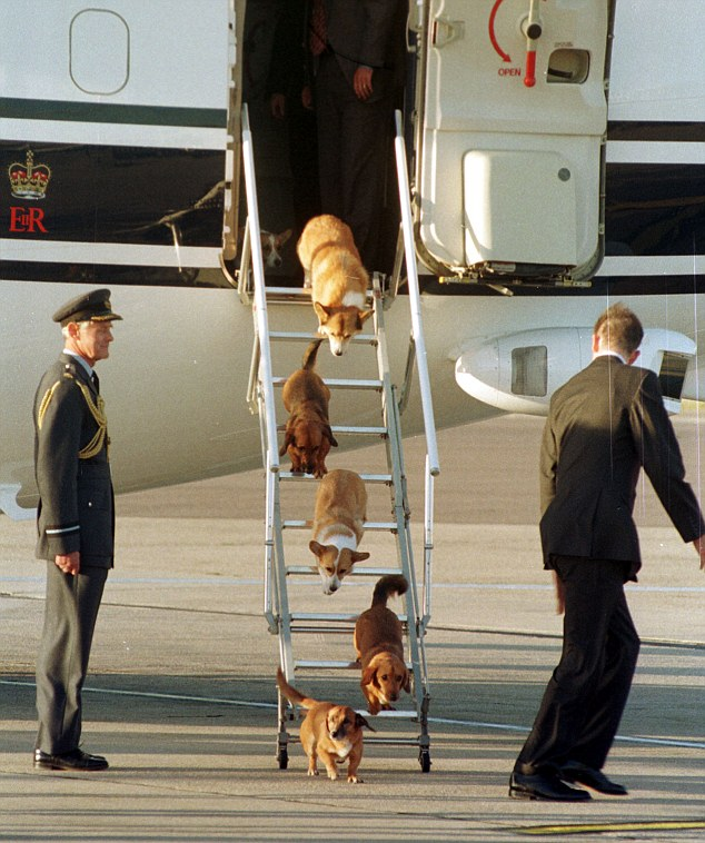 Top dogs: The Queen's dog disembark a flight in 1998. Animal psychologist Dr Roger Mugford said the dogs obeyed her majesty 'implicitly'