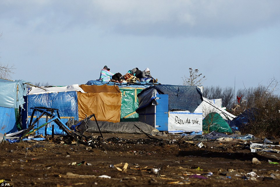 Taking a stand: Migrants were seen sitting on top of their makeshift buildings as diggers and workmen moved in to clear the camp today