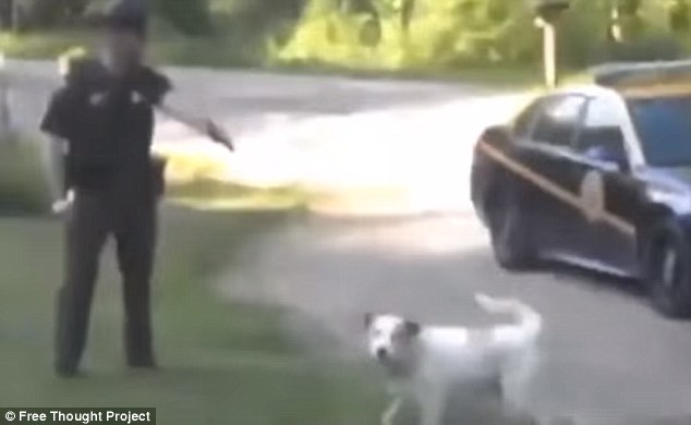This is the moment West Virginia state trooper Seth Cook aimed his gun at Buddy the dog last May