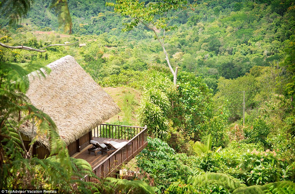 If you are looking of pampering, you may wish to opt for Pura Vida Ecolodge, an 'eco-luxury' retreat nestled amongst virgin rain forest in Central America's Costa Rica