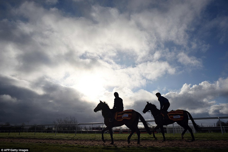 Race horses are exercised before the gates open to the public on the second day of the Grand National Festival horse race meeting