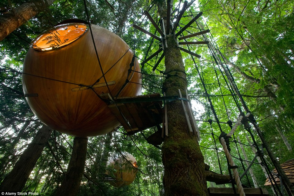 There are four different spherical rooms in all at the Free Spirit Spheres, Vancouver Island, Canada, and each can comfortably sleep an adult couple, though amenities are relatively limited inside