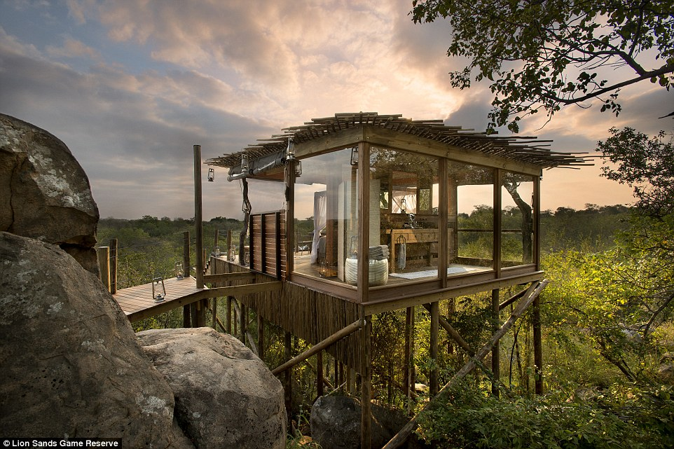 Get in touch with nature in the most lavish way possible by staying in one of these extravagant treehouses at Lion Sands Game Reserve
