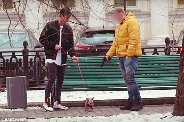 Shocking: Grisha persuaded people to shoot a small dog - which he claimed belonged to a girl who dumped him. However the gun had been disabled and the dog was not harmed