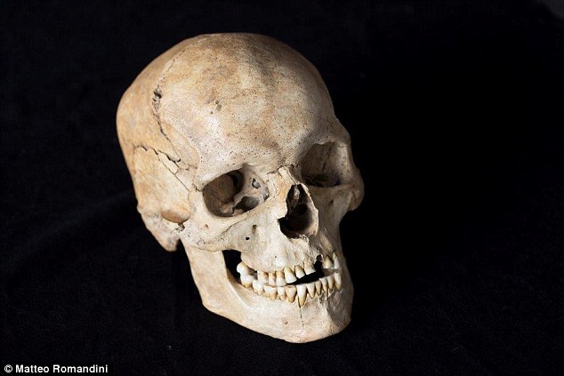 During the first major warming period at the end of the Ice Age, a new population swept in from the southeast, drawing the gene pools of Europeans and Near Easterners closer together. The skull of a 14,000-year-old individual discovered at the Villabruna in northeastern Italy is pictured