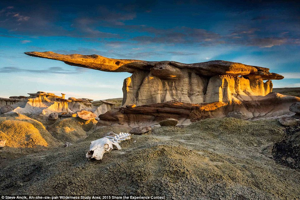 Scenic, Seasons & Landscapes Winner: An image of hoodoos - thin spires of rock - in the Ah-she-sle-pah Wilderness Study Area