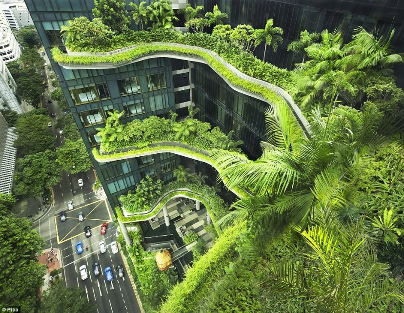 PARKROYAL on Pickering is a hotel in the heart of Singapore. The hotel, which opened in 2013, has 15,000 square metres of 'skygardens', expanses of lush greenery and cascading plants that run along balconies and walkways across four floors
