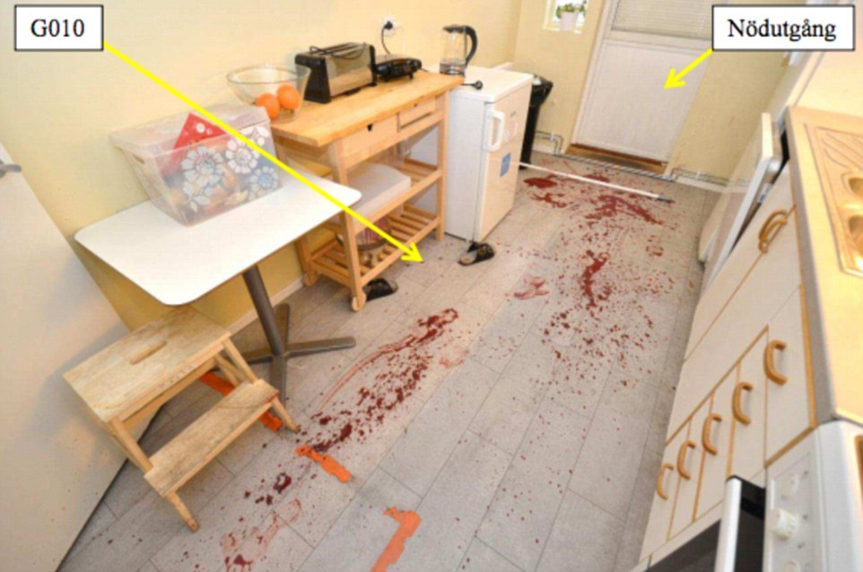 Bloodbath: This is the kitchen where 22-year-old Alexandra Mezher was attacked, allegedly by Youssaf Khaliif Nuur, who said he was 15