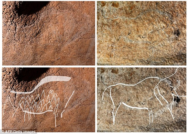 Two cave engravings representing bisons are seen on top, with the image below highlighting the figures.Garate made note of a particular bison during a recent conference, which was painted to show numerous spears sticking in its belly